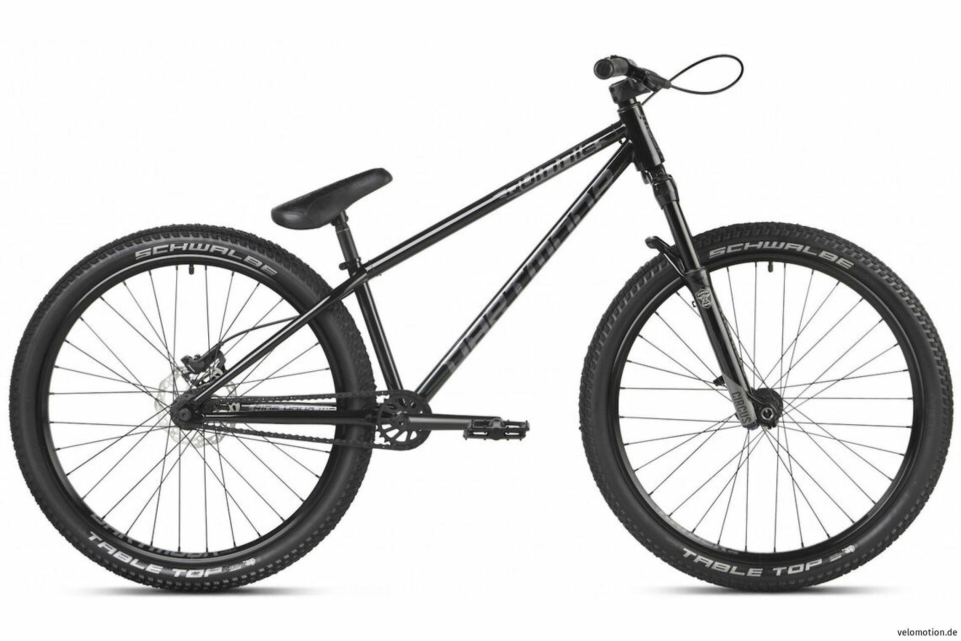 Dirt Bike Quinnie #1