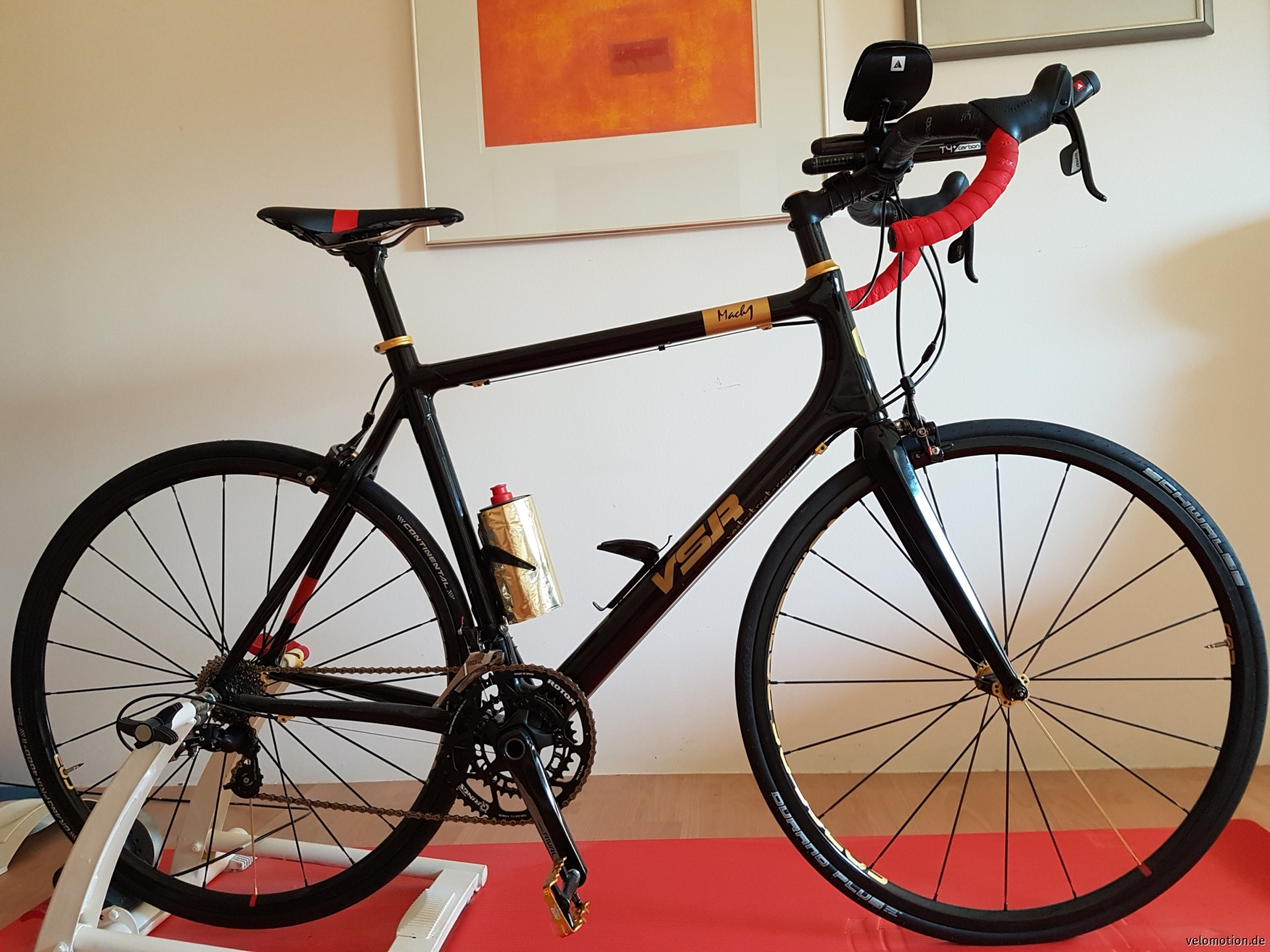 Corona zum Trotz, Voll-Carbon Rennrad #1