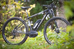 Tern eLink D7i: Das E-Bike zum Falten - Velomotion