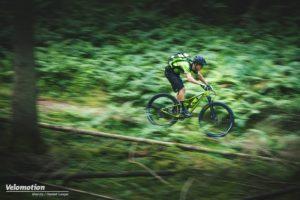 Cube Mountainbikes 2019