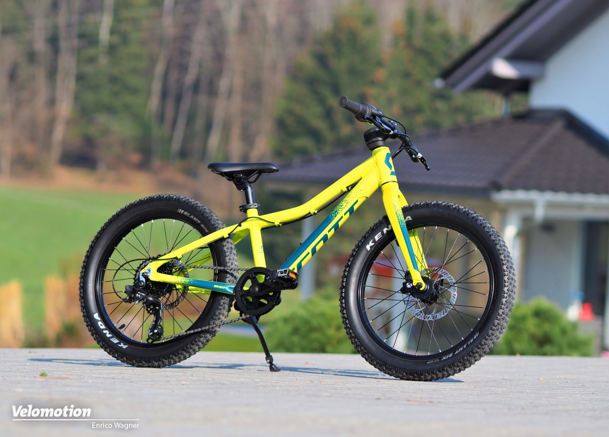 Scott Roxter 20