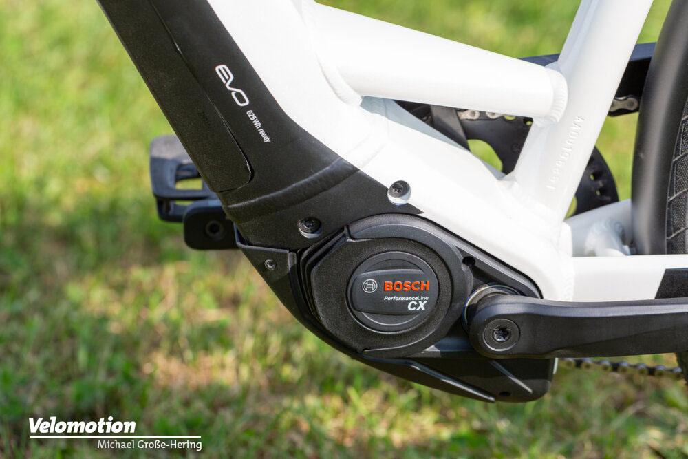 Neuer Bosch Performance Line CX Motor der vierten Generation am Pegasus Premio EVO 10 Lite