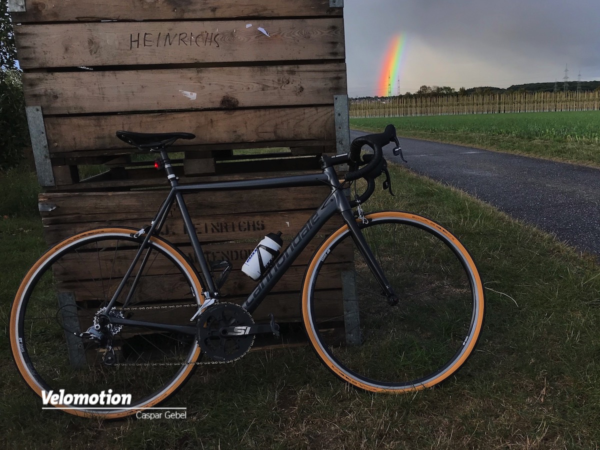 Schwalbe One TLE