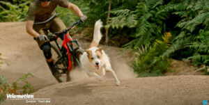 A Dog's Tale - Shimano Video